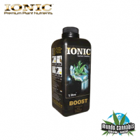 Ionic Boost