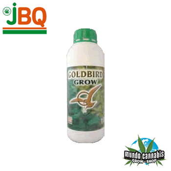 JBQ GoldBird Crecimiento