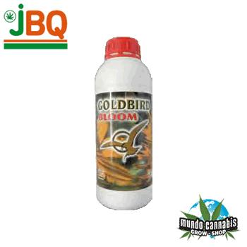 JBQ GoldBird Floración
