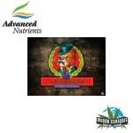 Advanced Nutrients Connoisseur A&B