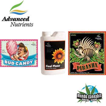 Advanced Nutrients Kit Expert