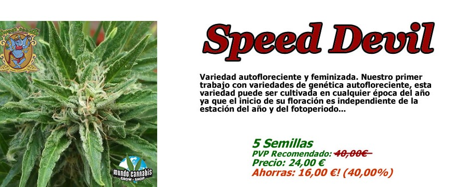Sweet Seeds Speed Devil Promo